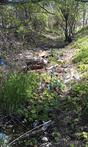 Нажмите на изображение для увеличения Название: Канава с мусором.jpg Просмотров: 378 Размер:99.5 Кб ID:255
